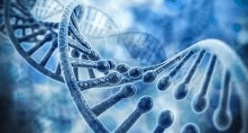 Tips for making OKRs part of your DNA